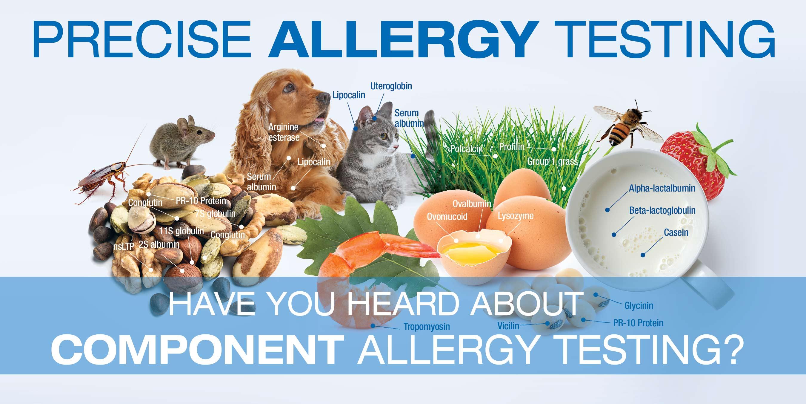 COVID-19 Testing Allergy Testing