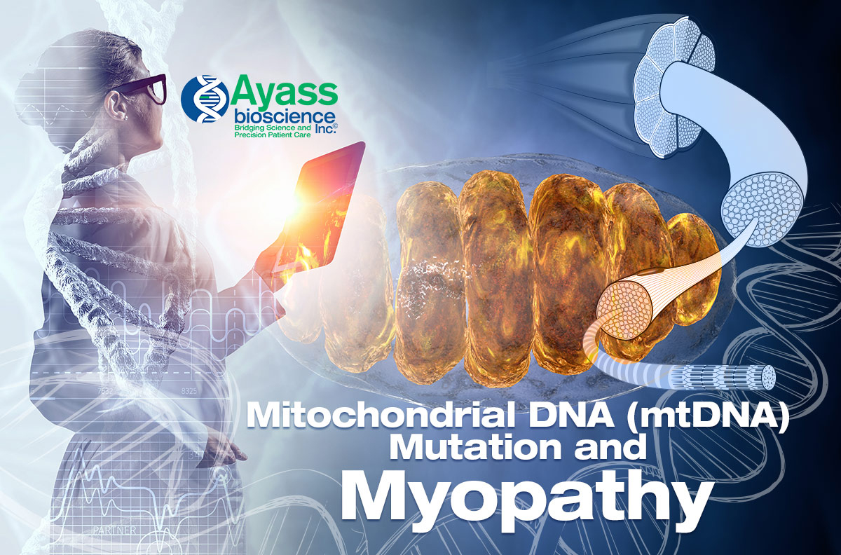 Mitochondrial DNA (mtDNA) Mutation and Myopathy