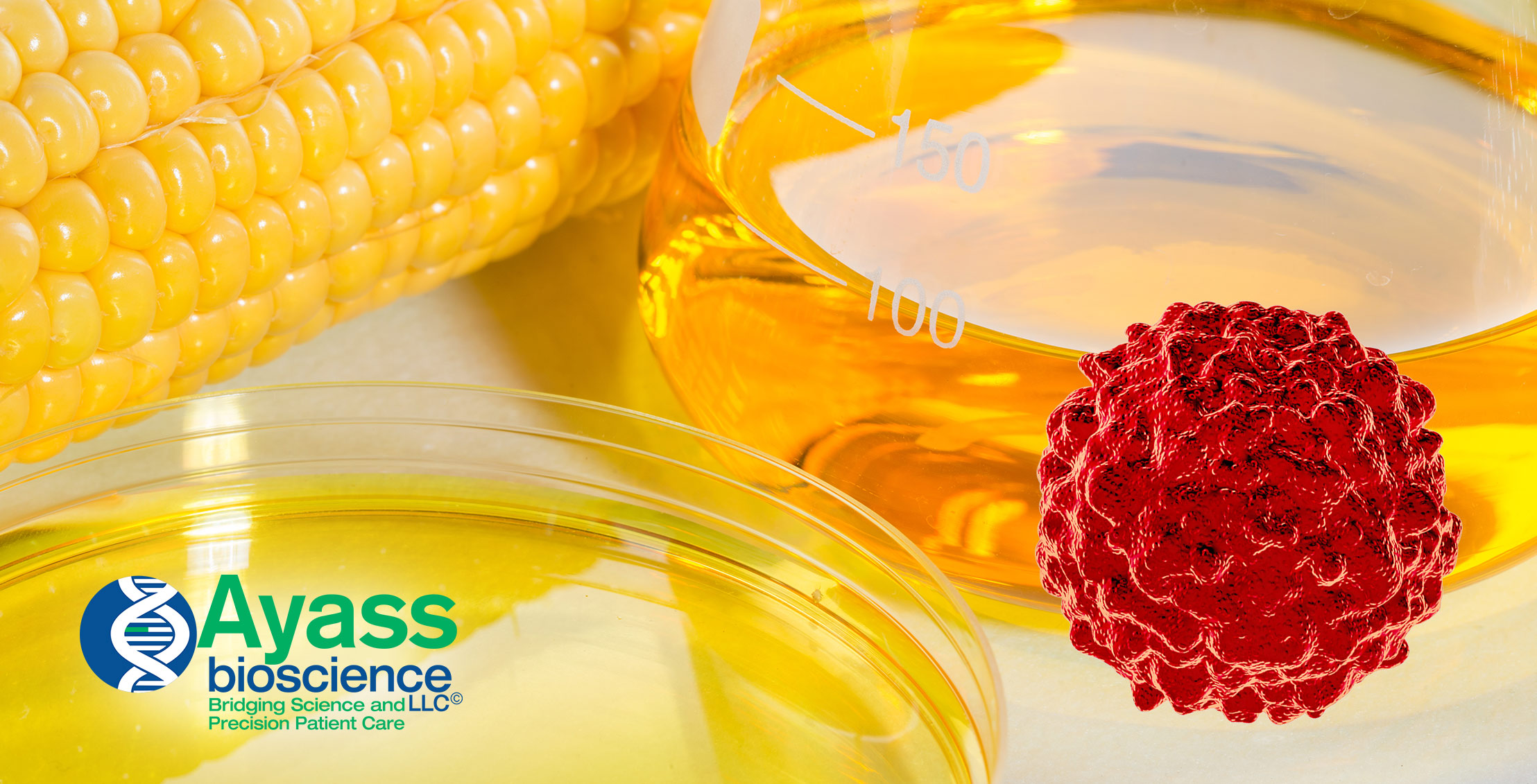 High Fructose Corn Syrup and Tumors