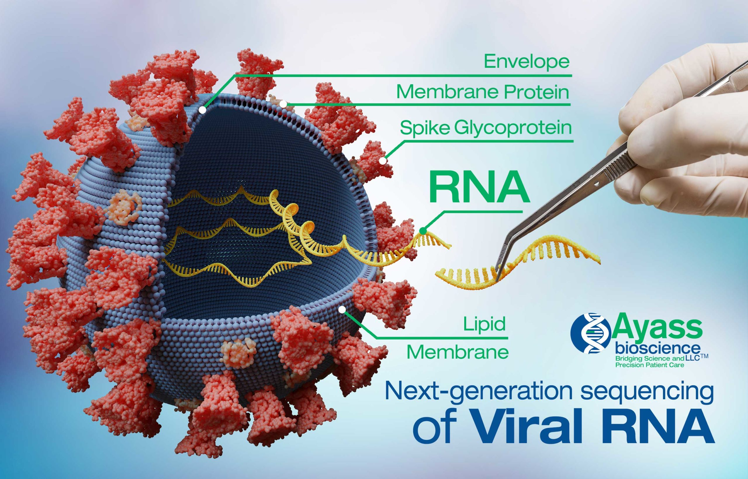 Next-generation sequencing  of Viral RNA for COVID-19 research