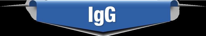 IgG Antibody Testing