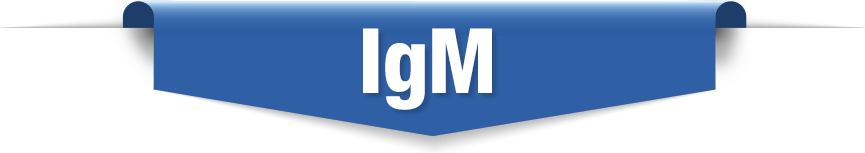IgM Antibody Testing