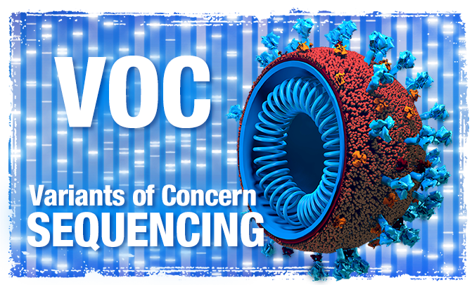 VOC Variants of Concern Sequencing